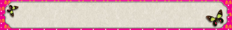 ETSY_BANNER_BOOKPLATE_PINK_BRIGHT_BUTTERFLY
