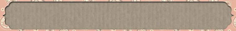 ETSY_BANNER_BOOKPLATE_PINK_PAISLEY