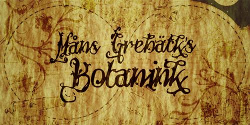 unique font, unique fonts, earthy font, handwriting fonts, calligraphy fonts, cool font, font list