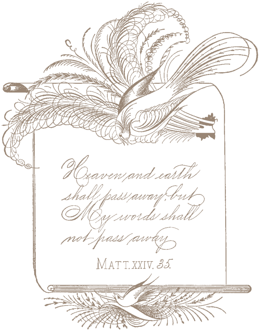 SSFS_Spencerian_Calligraphy_1 (4)