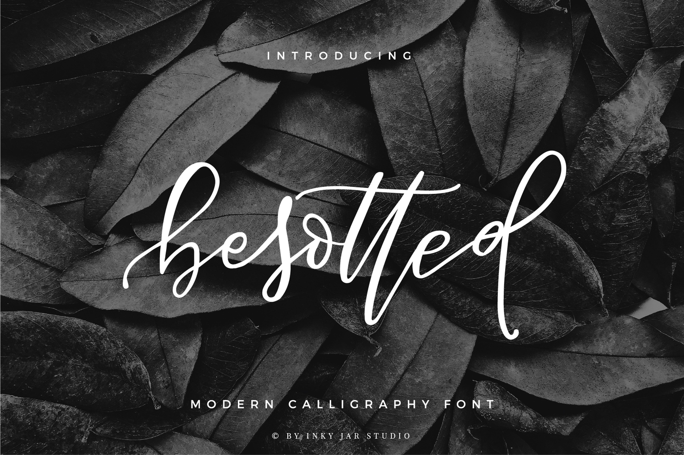 006_Besotted_Bounce_Brush_Script_Calligraphy_Font