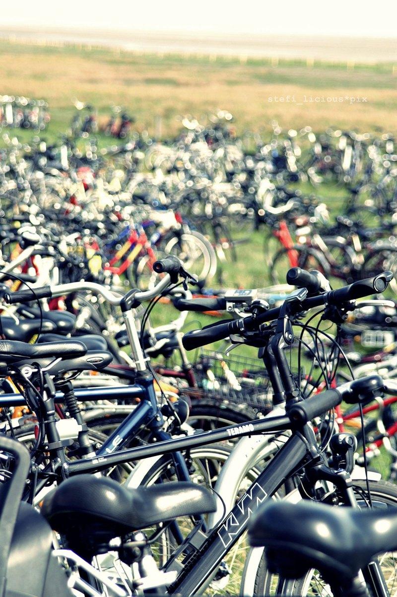 juist_2012_fahrräder