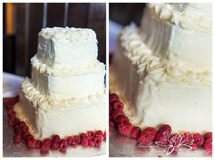 Toronto-Island-Wedding-Stephanie-Beach-Photography-cake