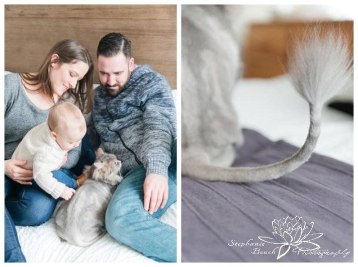 Ottawa-Family-Photographer-Stephanie-Beach-Photography-indoor-session-baby-cat