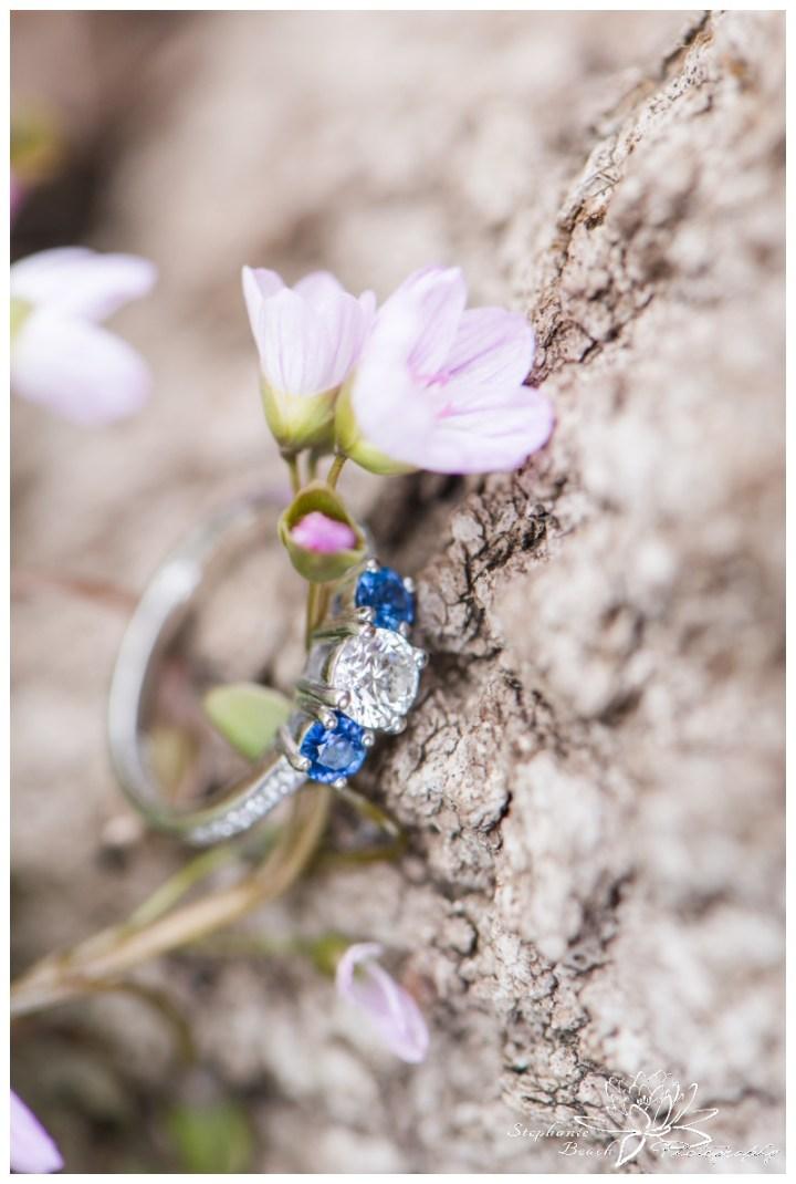 Beaver-Pond-Engagement-Session-Ottawa-Stephanie-Beach-Photography-ring-spring-beauty