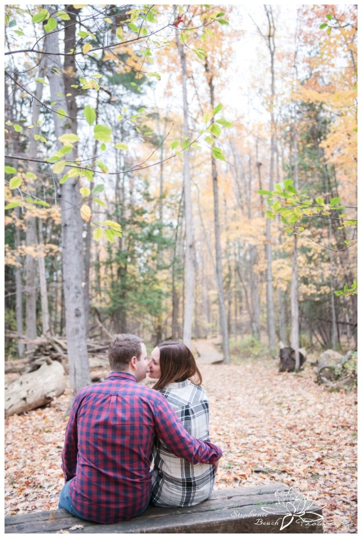 Jack-Pine-Trail-Engagement-Session-Stephanie-Beach-Photography-fall-colours-scenic-bench