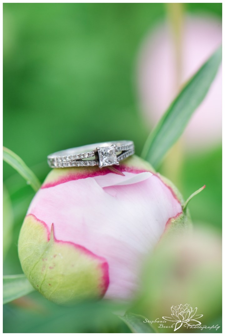 Major's-Hill-Park-Ottawa-Canal-Engagement-Session-Stephanie-Beach-Photography-peony-peonies-ring