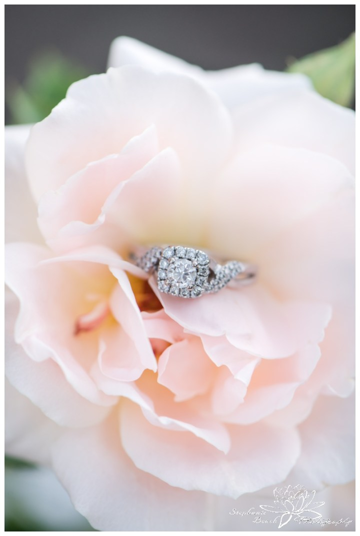 Ottawa-Ornamental-Gardens-Engagement-Session-Stephanie-Beach-Photography-ring-slower-blush