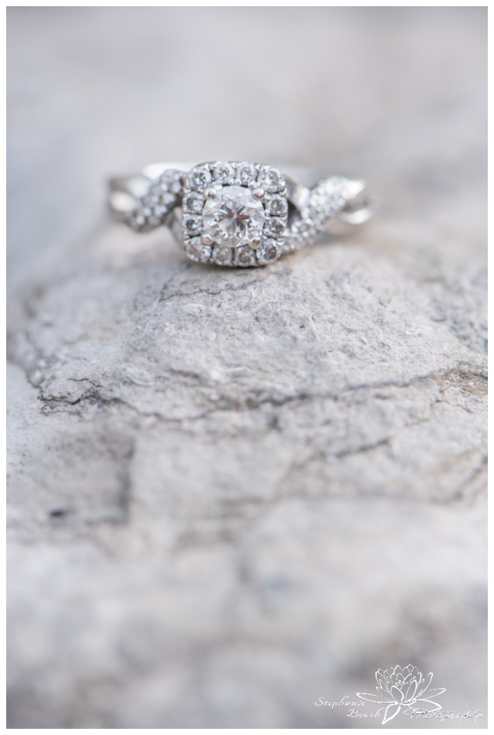 Ottawa-Ornamental-Gardens-Engagement-Session-Stephanie-Beach-Photography-ring-macro