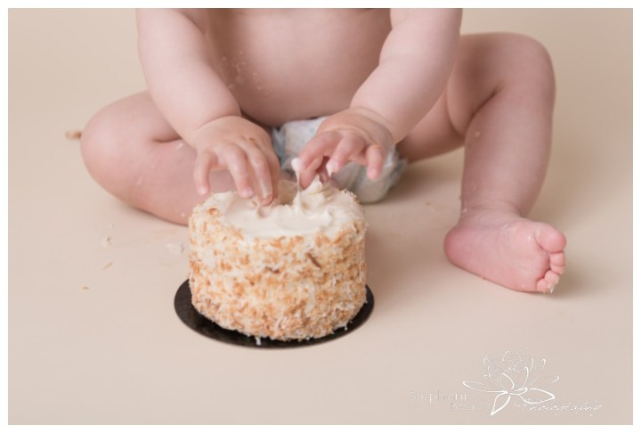 Ottawa-First-Year-Milestone-Portraits-and-Cake-Smash-Stephanie-Beach-Photography