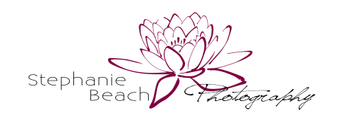 Stephanie Beach Photography Logo