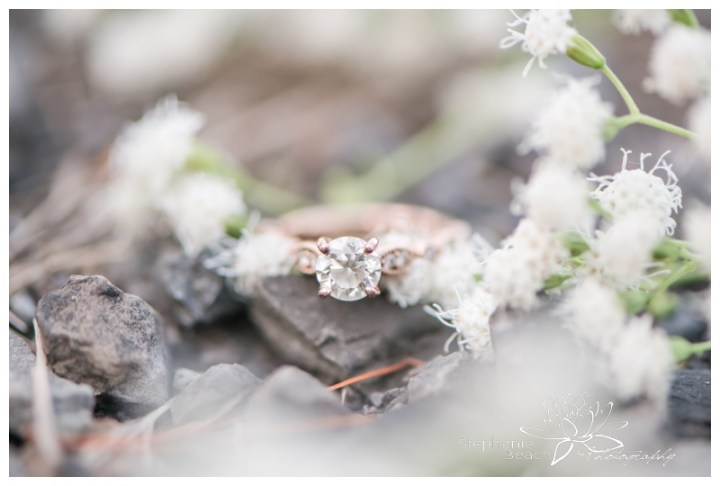 Baxter-Conservation-Area-Engagement-Session-Ottawa-Stephanie-Beach-Photography