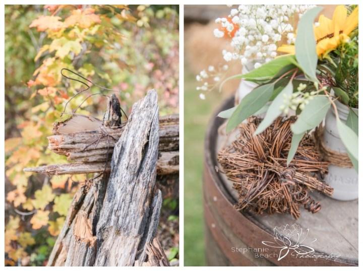Ottawa-Fall-Backyard-Wedding-Stephanie-Beach-Photography-ceremony-decor