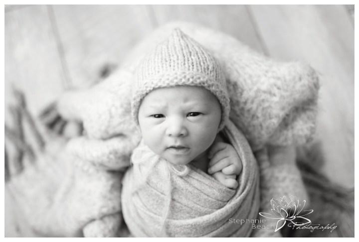 Studio-Newborn-Session-Stephanie-Beach-Photography
