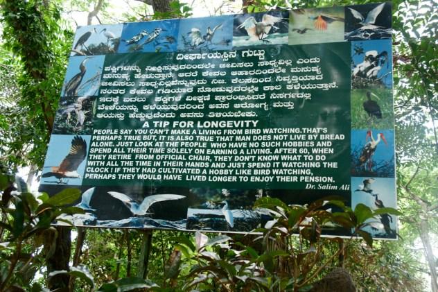 dr-salim-ali-bird-sanctuary-goa-biodiversity