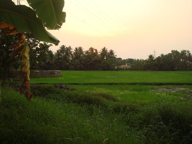 Gods Own Country Kerala-Beautiful Divine Place