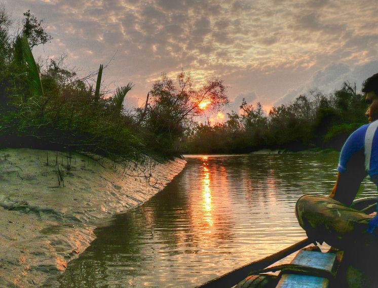 sundarbans national park west bengal images