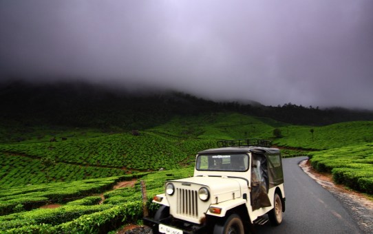 The Offbeat side of Mystical Munnar – Travelogue by Neelima Vallangi