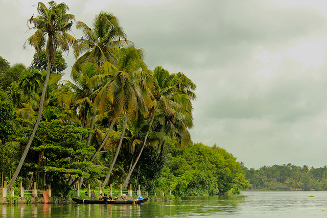 Mangroves of Kerala