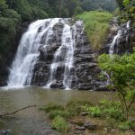 Visiting Wayanad? Here's where you need to head out to