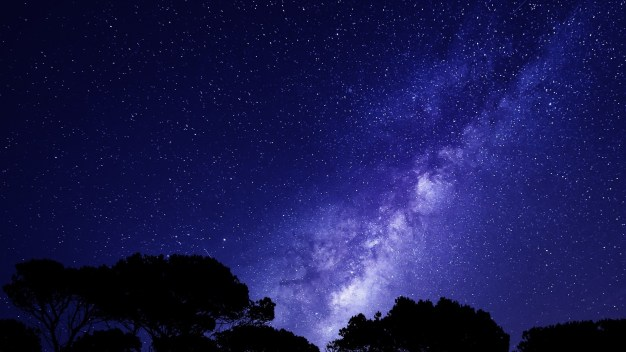 Camps under the night sky