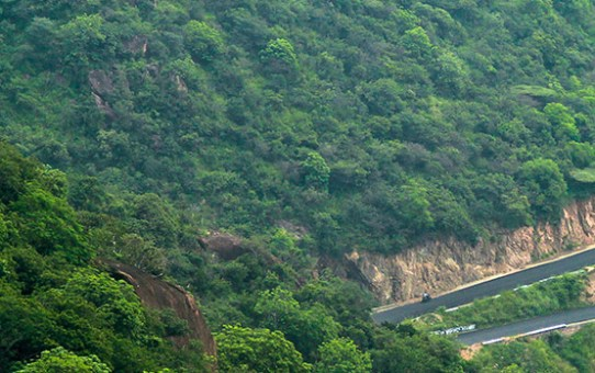 Road Trip Destinations in Tamil Nadu