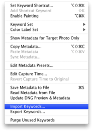 Lightroom_Metadata_menu.png