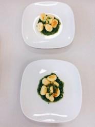 Gnocchi mit Pesto