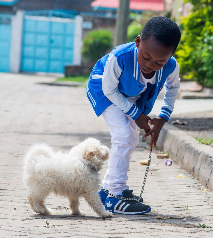 boy with dog on leash