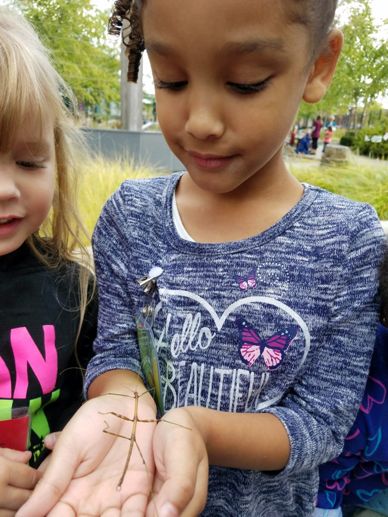child holding stick insect