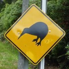 Kiwi_sign