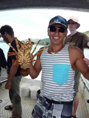 Crayfish boat trip, Maraehako Bay