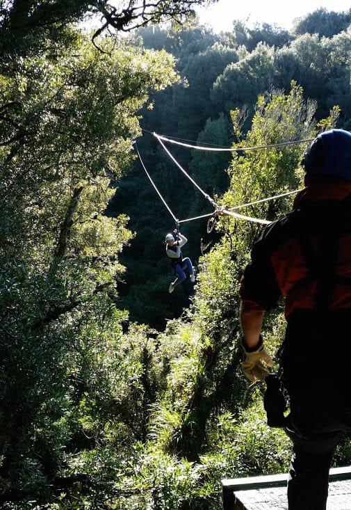 Ziplining at Rotorua Canopy Tours