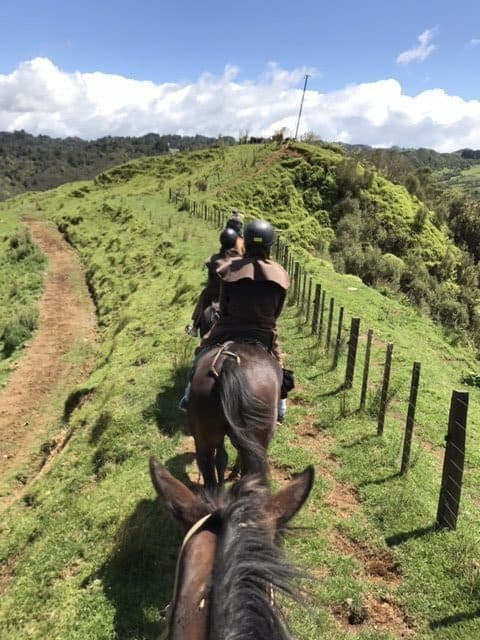 Stray New Zealand - Horseback riding at Blue Duck Station