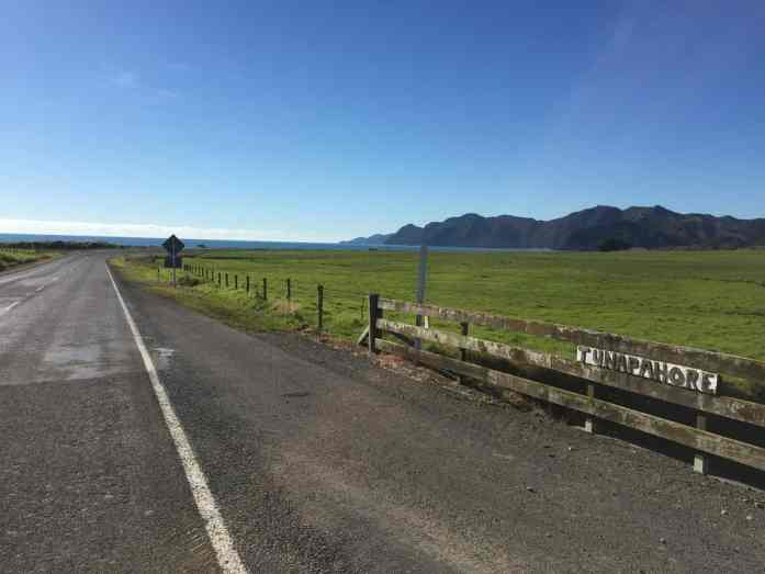 Open road of New Zealand's Pacific Coast Highway - Stray East Coaster