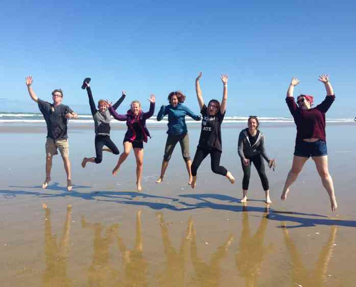 Stray Days on 90 Mile Beach - Stray NZ