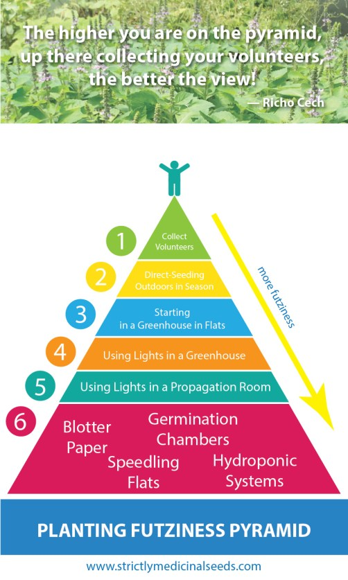Planting Futziness Pyramid