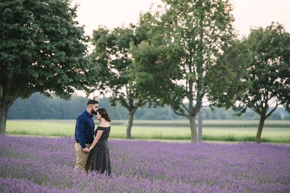 lavender-field-engagement-photos-farm-bonnie-heath