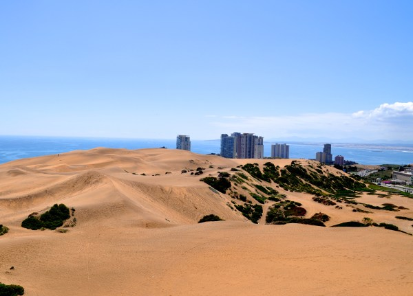 Dunas, Conco¦ün, Chile, Holcomb - Photo 8