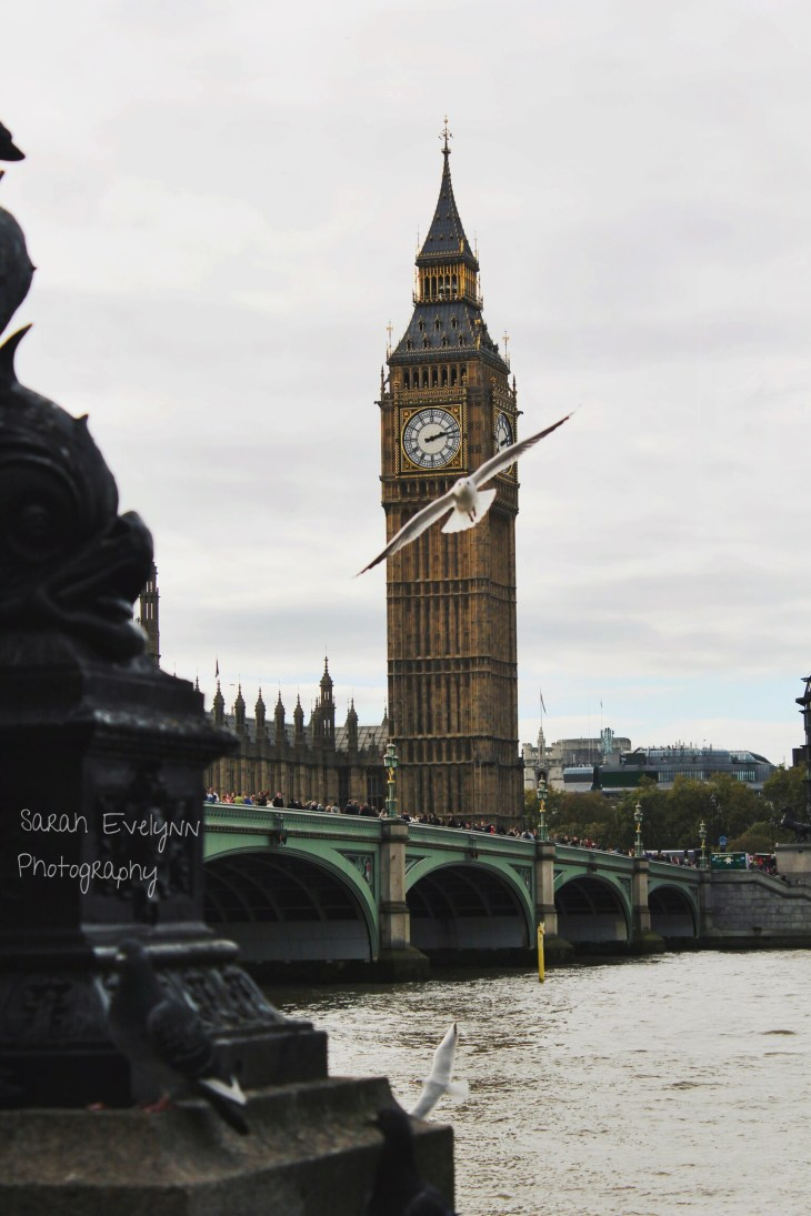 WestminsterBridge-London-Johndon-Photo5