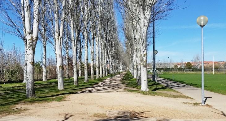 Running trail 2 - Salamanca, Spain - Dawson