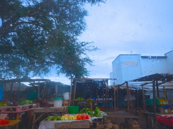 Marketplace, Livingstone, Zambia, Cornelssen - 3