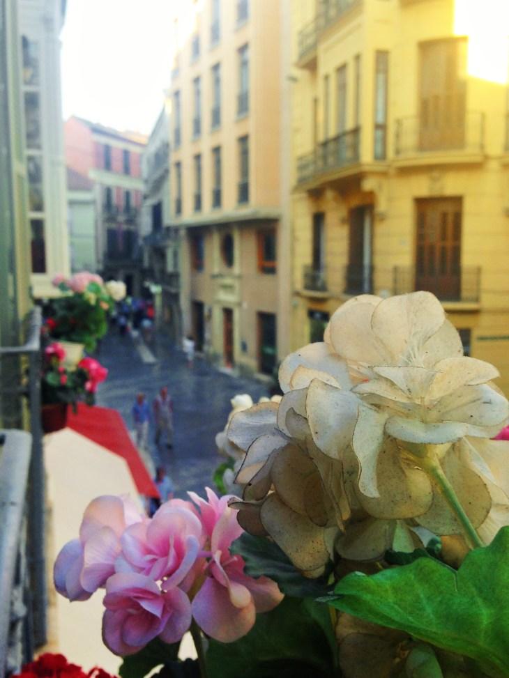 Street View, Malaga, Spain, Wollak - Photo 3