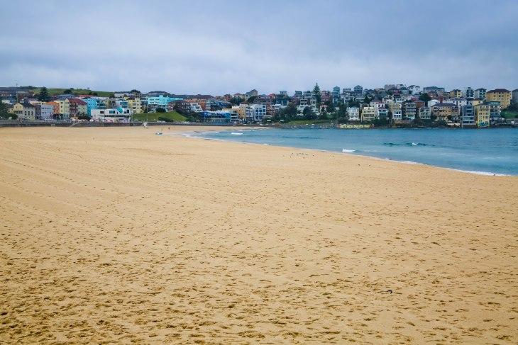 Bondi Beach, Sydney, Australia, Renard- Photo1