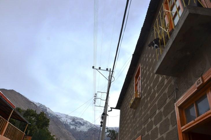 Hostel Dog, Pisco Elqui