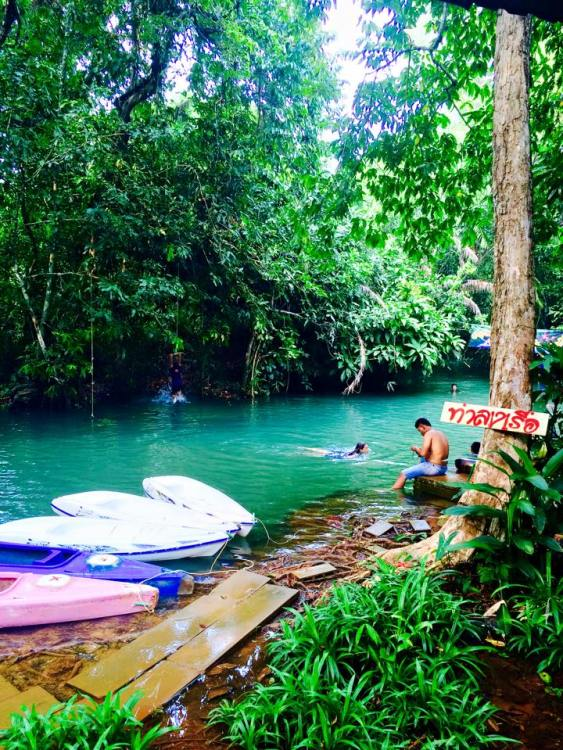 Rain Forest Swimming Hole