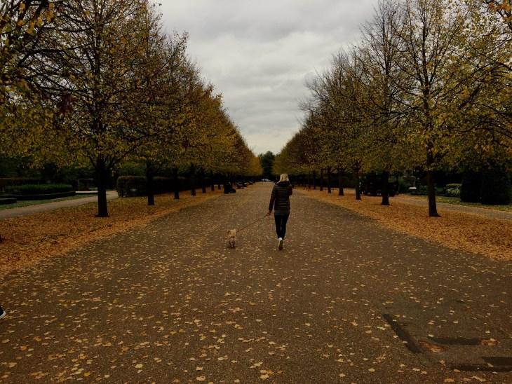 RegentGÇÖs Park, London, England, UK, Conwell-Photo 5