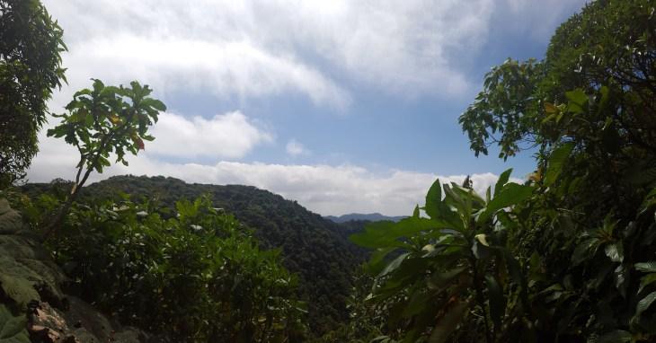 Trail Lookout, Monteverde, Costa Rica - Cowell - 4