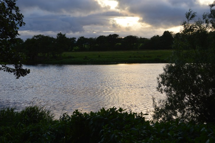 River, University of Limerick, Ireland