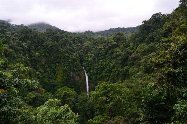 Overlook in the Catarata Ecological Reserve in La Fortuna.